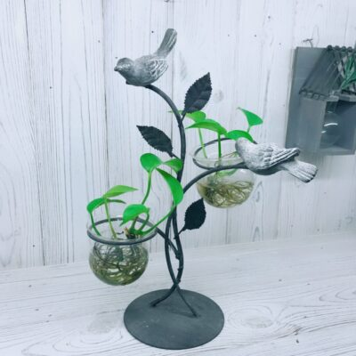 love bird hydroponic glass planter